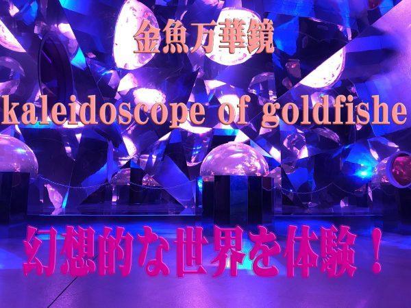 金魚万華鏡の開催場所は、開催期間は、料金は?