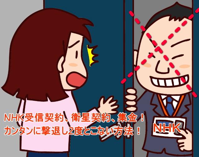 NHK(受信料)集金人が訪問してきたときの!必殺撃退法!2度とこなくなる!
