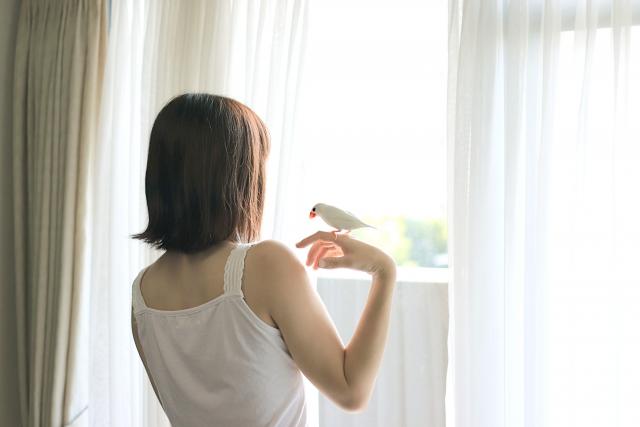 照射器,坂本花織,フィギアスケート,目覚め,朝起き,目覚まし時計,リズム,整える